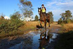Katherine Edden and Vicki Loynton's gorgeous mare Mel enjoys a good canter out hacking Professional Photographer, Horses, Pictures, Animals, Photos, Animales, Animaux, Animal, Animais