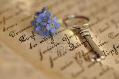 Vintage Key And Forget-me-nots On An Old Diary Royalty Free Stock Photo, Pictures, Images And Stock Photography. Image 9383428.