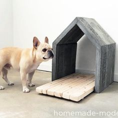 DOG MILK BLOG & Dog-I-Y: How to Make a Modern Concrete Dog House
