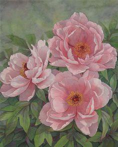 Julia Loken Watercolor by nanette