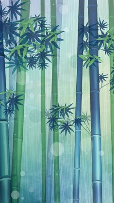 Bamboo iPhone Wallpapers