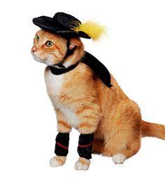 Cute Puss in Boots cat costume! I'm sure my cat wouldn't keep this on for very long :)