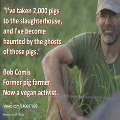 ~ courtesy Bob Comis former pig farmer now #vegan activist