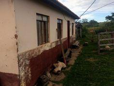 Polícia investiga possível latrocínio de idosa em fazenda de Patos de Minas