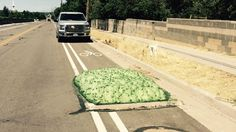 Residents of Bluffdale, Utah received quite a shock yesterday when an enormous blob of pale green foam sprung forth, seemingly out of nowhere, from a roadside irrigation gate.