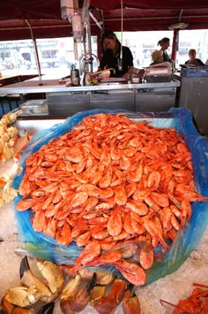 Fresh shrimp! Our guide to the best thing to do in Bergen, Norway--Visiting the Bergen Fish Market and Handicraft market for eating and souvenirs.