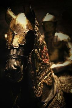 Beautiful horse armor for a knight in the cavalry.