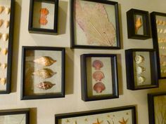 How to Display Seashells | This is the top of the very first shell mirror Mary made but the ...