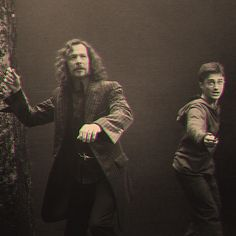 Sirius and Harry fight side by side moments before Sirius's death. :(