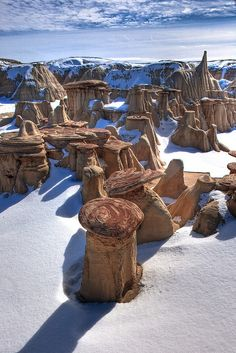 Cap rock plates of sandstone create hoodoo's in snow, Ash Paw canyon, New Mexico. paulgillphoto.com © All Rights Reserved.