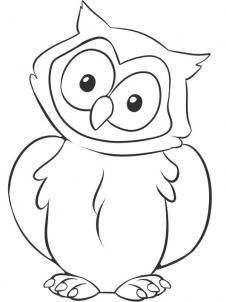 how to draw a cute baby owl