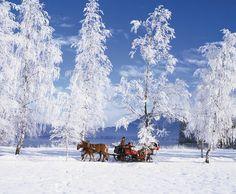 Winterurlaub im Stroblhof im Passeiertal
