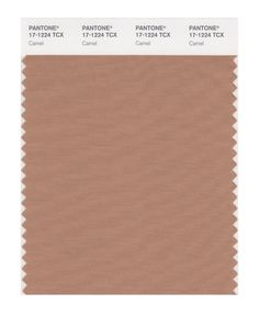 PANTONE SMART 17-1224X Color Swatch Card, Camel - Amazon.com. Springs neutral for easy combination - for coats, cardigans, trousers, skirts, shoes, bags...