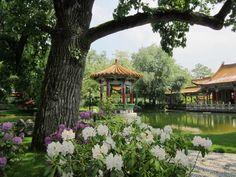 Chinese Garden | What to see | Zurich Zurich, Sister Cities, Kunming, Chinese Garden, China, Eurotrip, Garden S, Train Travel, Gazebo