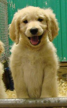 smile!! happy doodle!