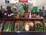 Armazém vende produtos orgânicos cultivados em assentamentos do MST - 06/08/2016 - sãopaulo - Folha de S.Paulo