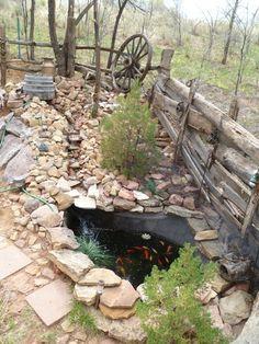 home built backyard pond