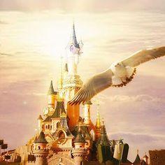 DREAM BIG 🌟 Une journée à @disneylandparis, cela valait bien quelques photos sur le blog non ? Après promis j'arrête ... ou pas 😋. Vous avez juste à cliquer sur le lien dans ma bio pour y accéder. Bonne soirée  #Disneylandparis #Disney #magiceverywhere #Light #Lumière #Labelleauboisdormant #SleepingBeauty #Bird #Oiseau #Chateau #Castle #Photo #awesome_earthpix