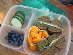 Lunches Fit For a Kid: Lunches for an Outing at the Museum!