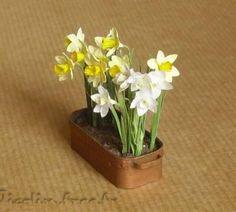 Miniatures et maisons de poupees : plantes et fleurs