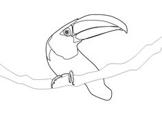 13 best the pink one images on pinterest flamingos beautiful Winnebago Wiring Diagrams see photo coloring pages colors birds quote coloring pages colouring pages colour bird coloring books coloring sheets color colouring sheets