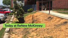 It was #ArborDay on Friday and the team at ReNew McKinney planted Magnolia trees! 🌲