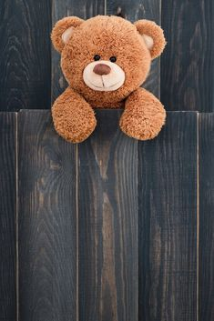 Cute teddy bear with old wood background Funny Phone Wallpaper, Flower Phone Wallpaper, Bear Wallpaper, Cute Pastel Wallpaper, Cute Wallpaper Backgrounds, Pretty Wallpapers, Teddy Bear Images, Teddy Bear Pictures, Cute Bunny Cartoon