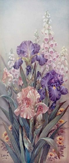 Purple Irises & Foixgloves