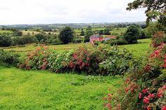 Countryside near Cootehill, County Cavan, Ireland