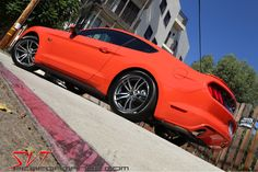 """""""Curb Appeal"""" redefined.  SVT Performance."""