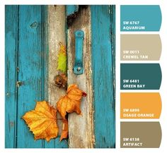 Instantly turn any picture into a palette with ColorSnap, created for you by Sherwin-Williams. Orange Color Palettes, Fall Color Palette, Teal Orange, Blue Grey, Colour Schemes, Color Combos, Favorite Paint Colors, Design Seeds, Color Pallets