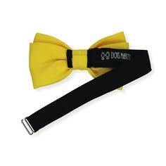 Gravata Borboleta Amarelo Ouro – Dois Maridos – Gravatas Borboletas, Suspensórios e informações de moda.