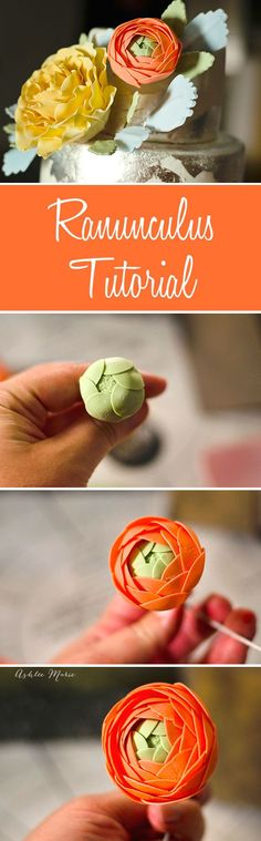 A tutorial for creating your own gumpaste ranunculus to decorate your cakes with