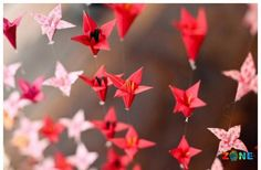 Beautiful red origami cranes to match cherry blossom decor Origami Mouse, Origami Fish, Origami Paper, Origami Cranes, Oragami, Origami Gift Bag, Origami Bookmark, Folded Paper Flowers, Origami Flowers