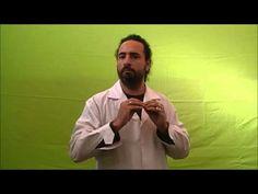 """Lengua de Señas - Instituto de Idiomas: Nivel 5. Videocomprensión """"Cultura. Sordos y oyent... Peace, Videos, Fictional Characters, Sign Language, Culture, Fantasy Characters, Sobriety, World"""