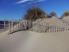 Dunes By LGB