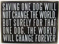 One can never have enough dog signs, right? These rescue dog signs remind us what a difference you can make by adopting. They make special gifts for dog lovers on your list. Labrador Retriever, Golden Retriever, Rescue Dog Quotes, Rescue Dogs, Pet Quotes, Dog Lover Quotes, Dog Lover Gifts, Dog Lovers, Pet Gifts