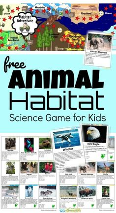 Science Curriculum, Kindergarten Science, Teaching Science, Life Science, Preschool, Teaching Habitats, Science Games For Kids, Science Ideas, Science Experiments