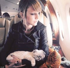 Way to her heart: Taylor Swift loves her cats, and has been rumoured to be dating Canadian rapper Drake