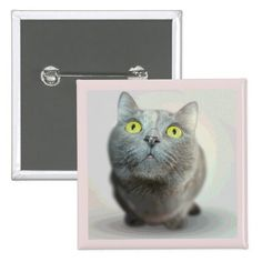 Cute Gray Cat with Big Green Eyes Button.  Personalize with your own text.