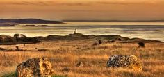 cattle point lighthouse - Google Search