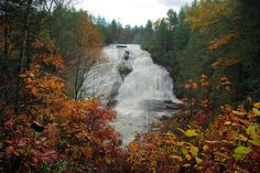 High Falls at DuPont State Forest, home to waterfalls near Asheville and Hendersonville NC: http://www.romanticasheville.com/dupont.htm Waterfalls Near Asheville Nc, North Carolina Waterfalls, Nc Waterfalls, North Carolina Mountains, Nc Mountains, Western North Carolina, Blue Ridge Mountains, Dupont State Forest, Ashville Nc