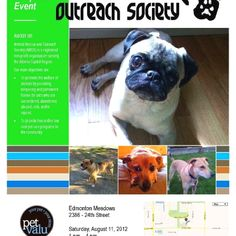 Animal Rescue and Outreach is hosting our first adoption event! If you are in the Edmonton area come on down and check us out!