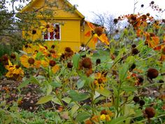 Yellow dacha, Russia.