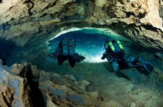 Cavern Blue Springs State Park Florida | ... swim through the tunnels at Madison Blue Spring State Park in Florida