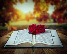 Understanding God's Wisdom in the Quran Muslim Quotes, Islamic Quotes, Quran Pak, Quran Recitation, God's Wisdom, Noble Quran, Judging Others, You Promised, Good Deeds
