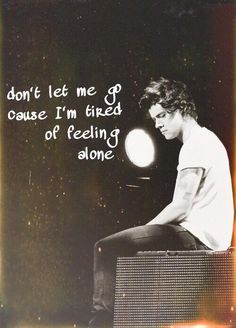 - Harry Styles, One Direction (Don't Let Me Go - lyrics)