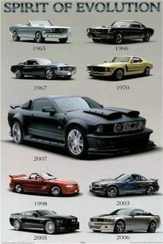 """SPT00537"""" Mustang - Spirit of Evolution"""" (24 X 36) #InfographicsIcons"""