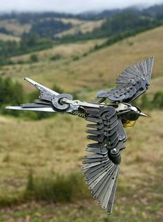 birds, of the future skies..