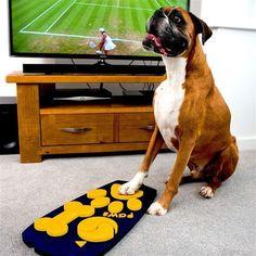 ¿Qué ven los perros cuando miran al televisor?